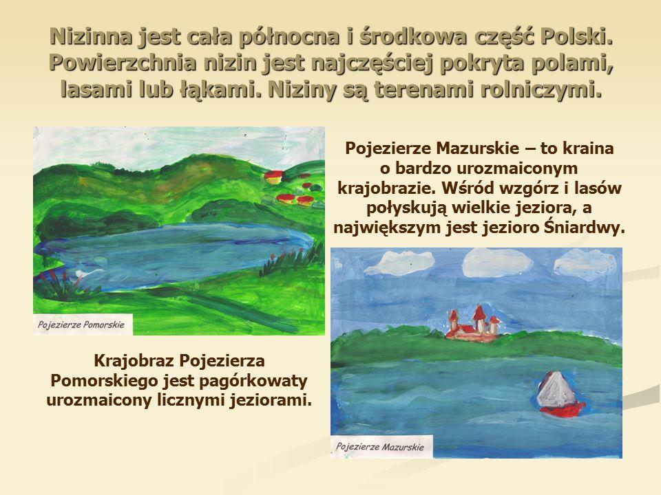 Nizinna jest cała północna i środkowa część Polski.