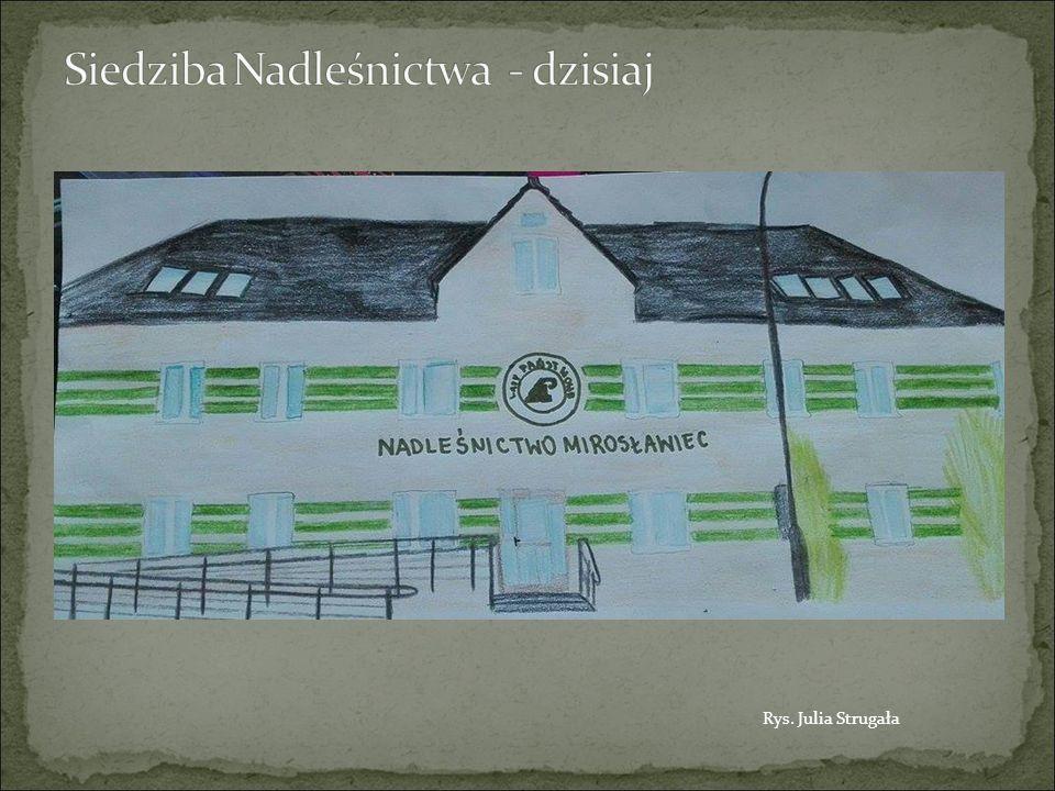  Mieczysław Danowski (1945-1946)  Jan Kirenlenko (1948-1952)  Ludwik Śledź (1952-1953)  Bolesław Wolniewicz (1953-1961)  Marian Sidorski (1968-1977)  Józef Grzelczak (1978)  Antoni Przybylski (1978-1979)  Lech Adamski (1979-1992)  Kazimierz Deus (1992-2015)  Paweł Olszacki (od 2015) Źródło: Archiwum Nadleśnictwa Mirosławiec