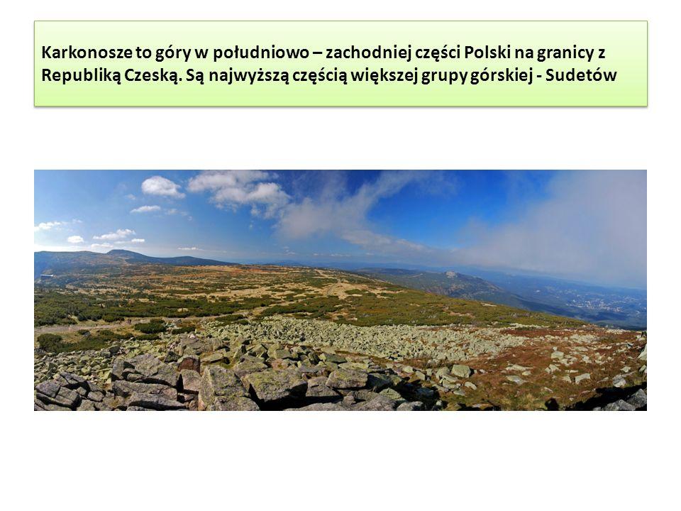 Niezwykłością Karkonoszy są przedziwne skałki takie jak Słonecznik Słonecznik wziął swoją nazwę stąd, że dla mieszkańców Karpacza słońce nad skałą wskazywało południe.