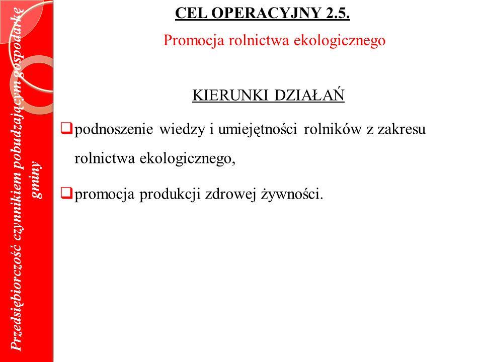 Przedsiębiorczość czynnikiem pobudzającym gospodarkę gminy CEL OPERACYJNY 2.5.