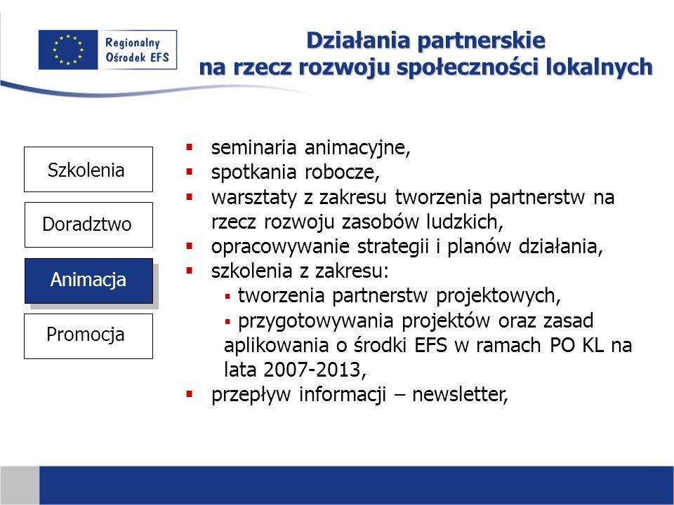 Działania partnerskie na rzecz rozwoju społeczności lokalnych Szkolenia Animacja Doradztwo Promocja  seminaria animacyjne,  spotkania robocze,  warsztaty z zakresu tworzenia partnerstw na rzecz rozwoju zasobów ludzkich,  opracowywanie strategii i planów działania,  szkolenia z zakresu:  tworzenia partnerstw projektowych,  przygotowywania projektów oraz zasad aplikowania o środki EFS w ramach PO KL na lata 2007-2013,  przepływ informacji – newsletter,