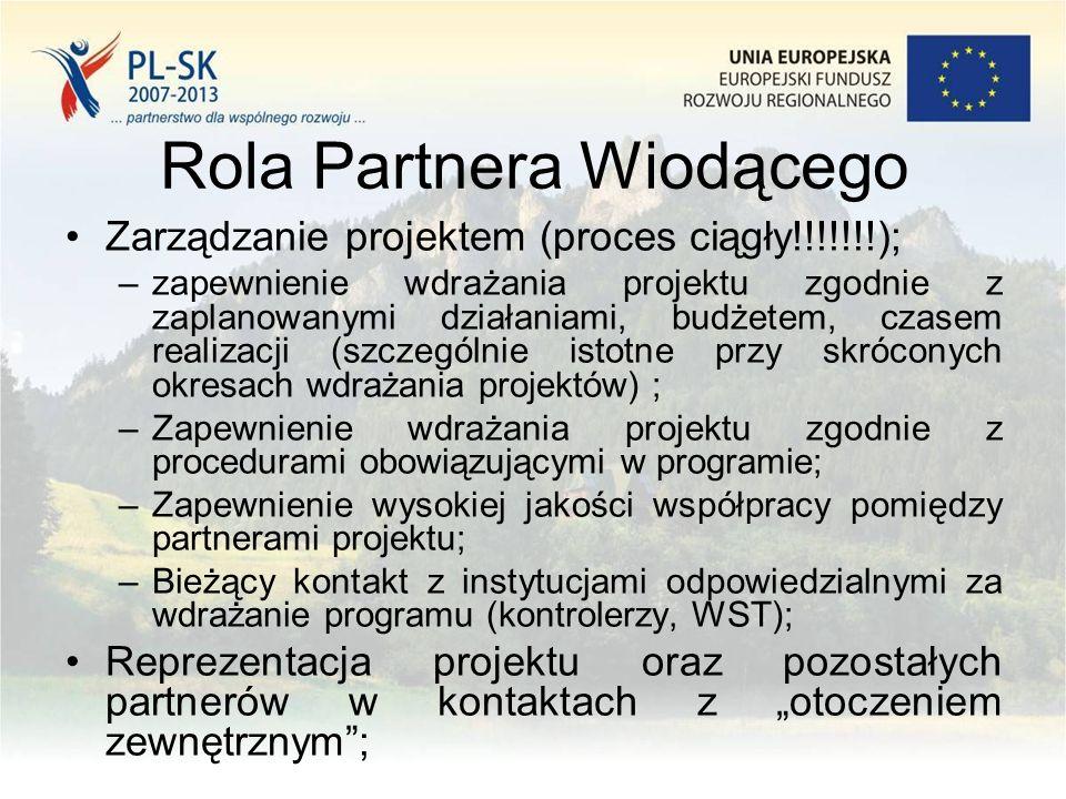 Rola Partnera Wiodącego Odpowiedzialność za: –Prawidłową realizację całego projektu; –Nieprawidłowości; Aktualizacja i posiadanie pełnej wiedzy nt.