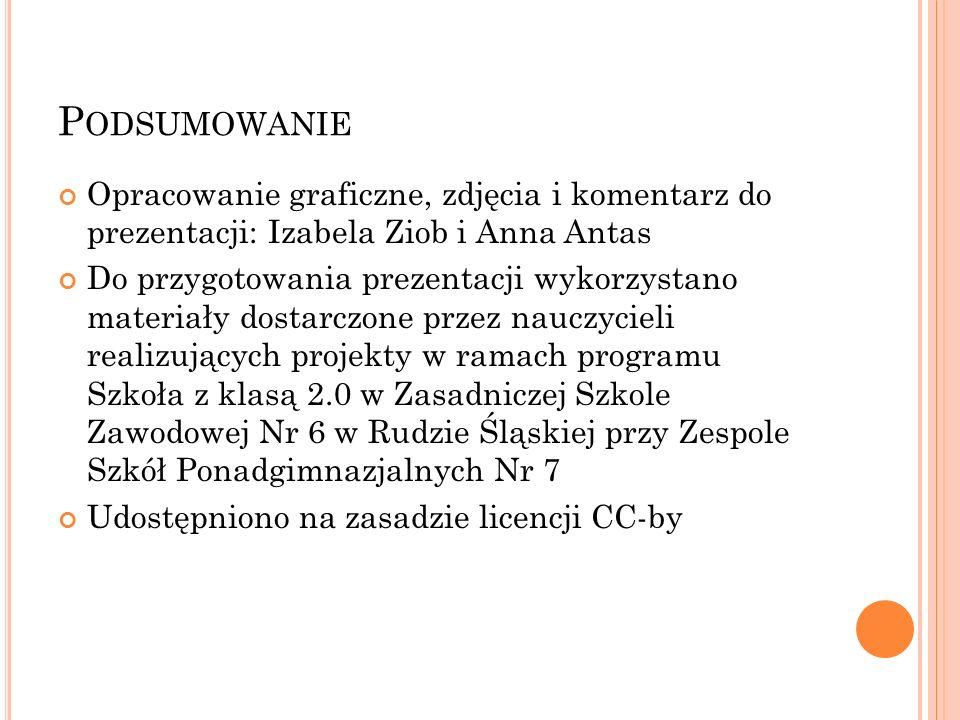 P ODSUMOWANIE Opracowanie graficzne, zdjęcia i komentarz do prezentacji: Izabela Ziob i Anna Antas Do przygotowania prezentacji wykorzystano materiały