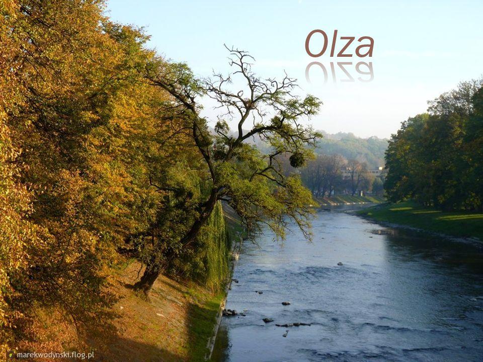 Pod względem administracyjnym na obszar Śląska Cieszyńskiego składają się: w części polskiej: powiat cieszyński, zachodnia część powiatu bielskiego or