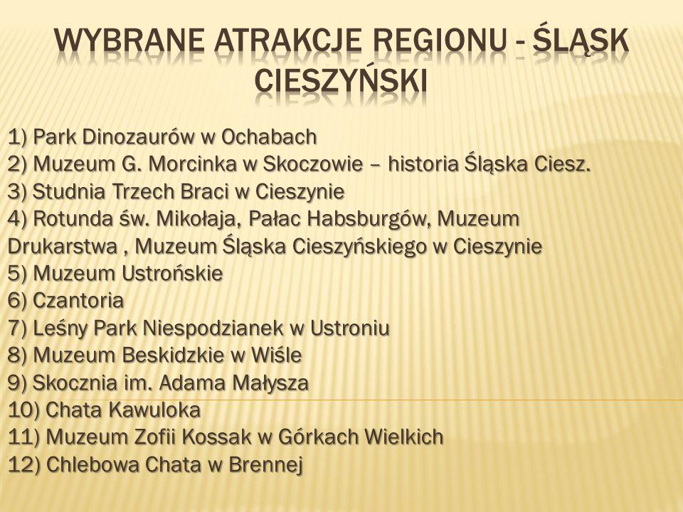 1) Park Dinozaurów w Ochabach 2) Muzeum G.Morcinka w Skoczowie – historia Śląska Ciesz.