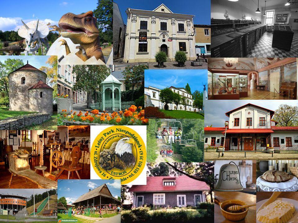 1) Park Dinozaurów w Ochabach 2) Muzeum G. Morcinka w Skoczowie – historia Śląska Ciesz.