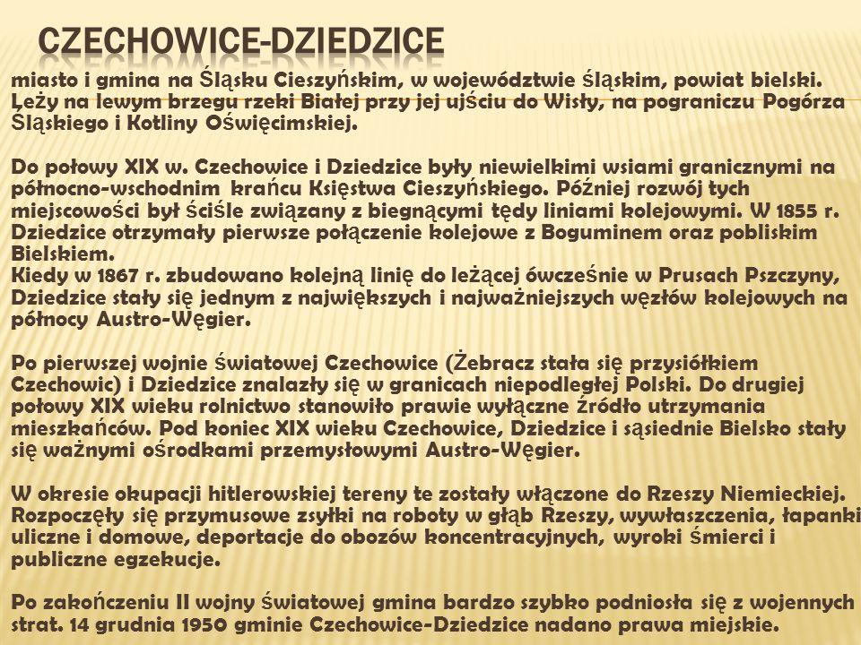  miasto i gmina na Ś l ą sku Cieszy ń skim, w województwie ś l ą skim, powiat bielski.