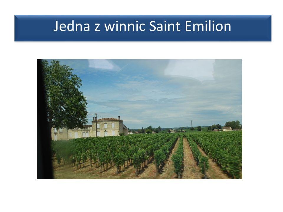 Jedna z winnic Saint Emilion