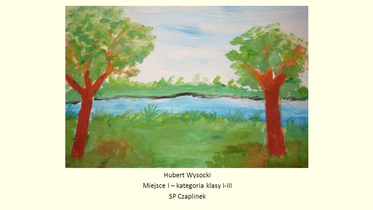 Hubert Wysocki Miejsce I – kategoria klasy I-III SP Czaplinek