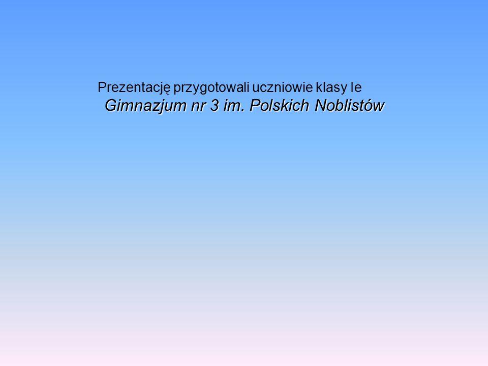 Prezentację przygotowali uczniowie klasy Ie Gimnazjum nr 3 im. Polskich Noblistów