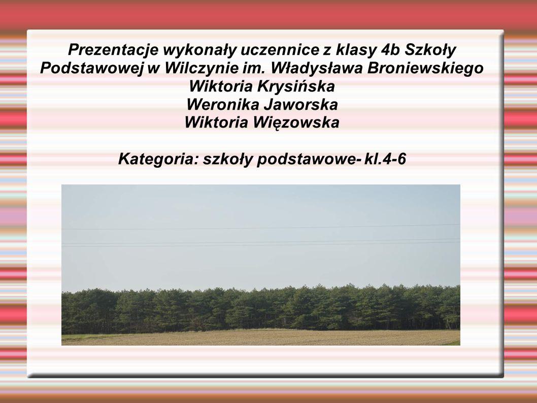 Prezentacje wykonały uczennice z klasy 4b Szkoły Podstawowej w Wilczynie im.