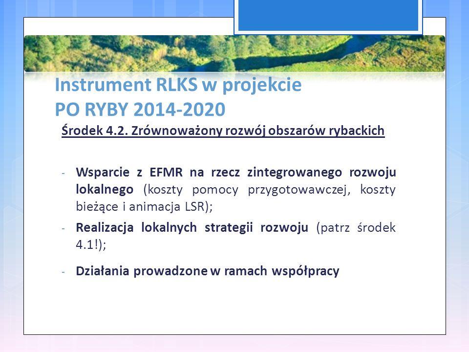 Instrument RLKS w projekcie PO RYBY 2014-2020 Środek 4.2.