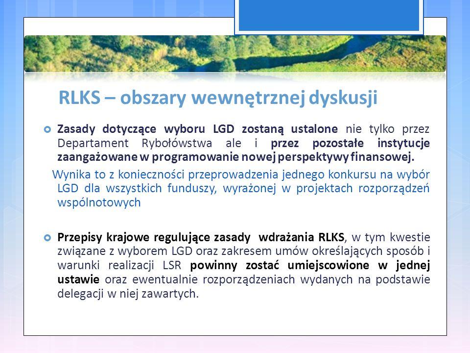 RLKS – obszary wewnętrznej dyskusji  Zasady dotyczące wyboru LGD zostaną ustalone nie tylko przez Departament Rybołówstwa ale i przez pozostałe instytucje zaangażowane w programowanie nowej perspektywy finansowej.