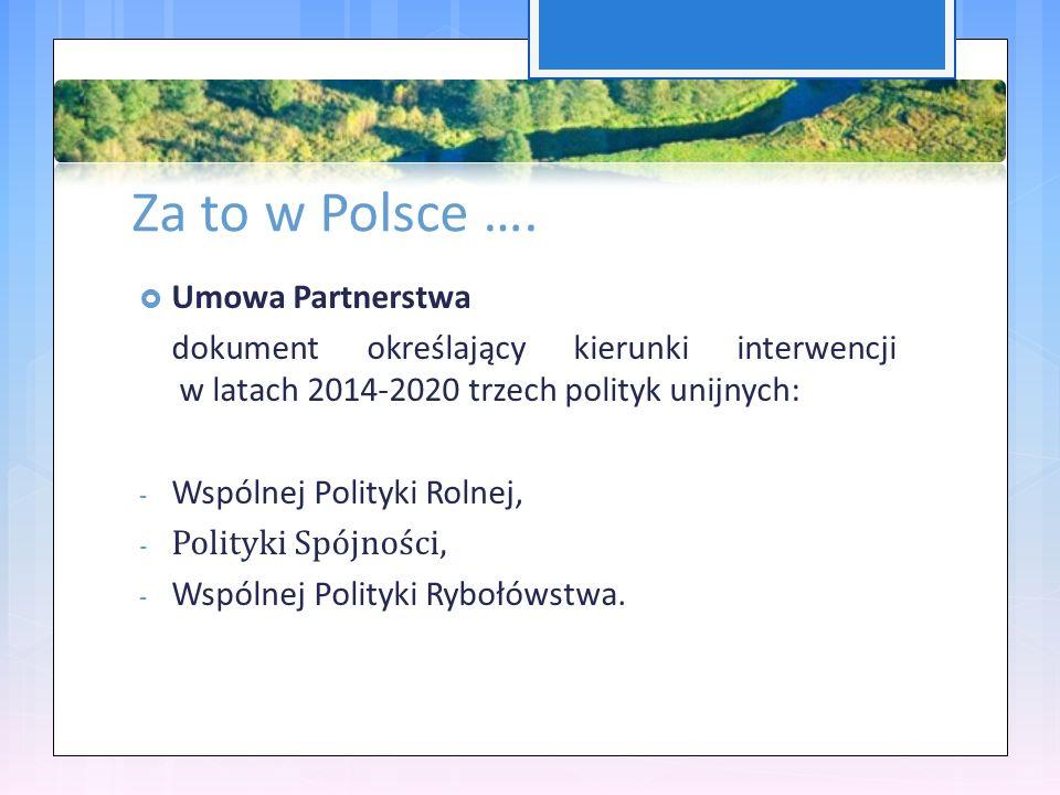 Za to w Polsce ….