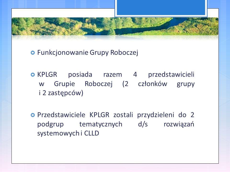  Funkcjonowanie Grupy Roboczej  KPLGR posiada razem 4 przedstawicieli w Grupie Roboczej (2 członków grupy i 2 zastępców)  Przedstawiciele KPLGR zostali przydzieleni do 2 podgrup tematycznych d/s rozwiązań systemowych i CLLD