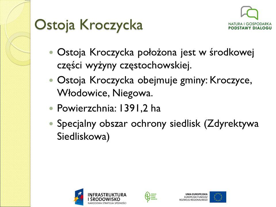 Ostoja Kroczycka Ostoja Kroczycka położona jest w środkowej części wyżyny częstochowskiej.