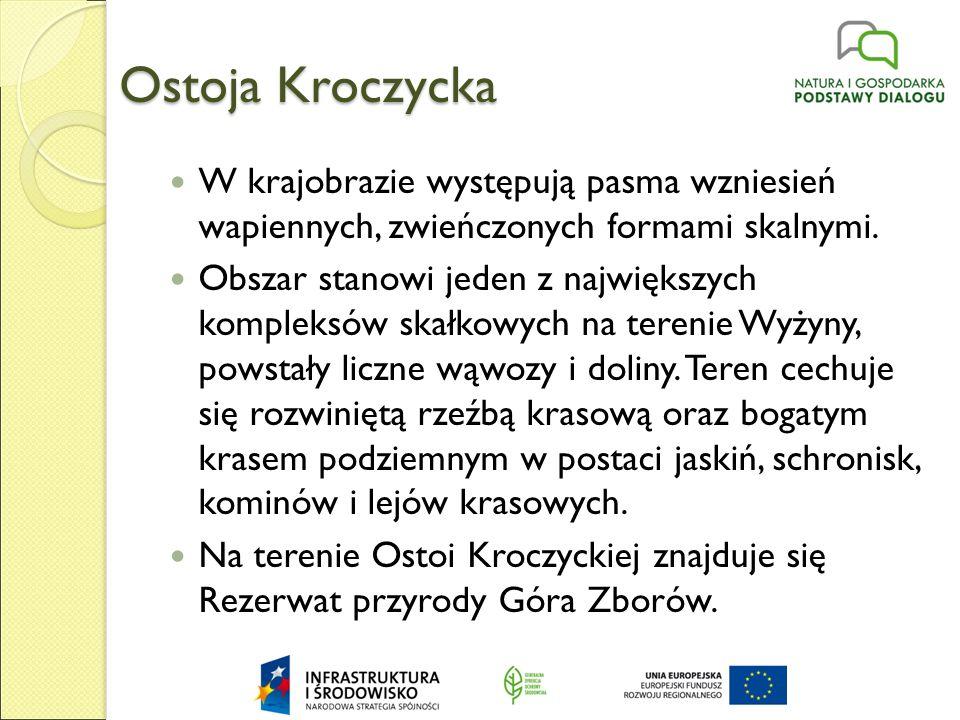 Ostoja Kroczycka