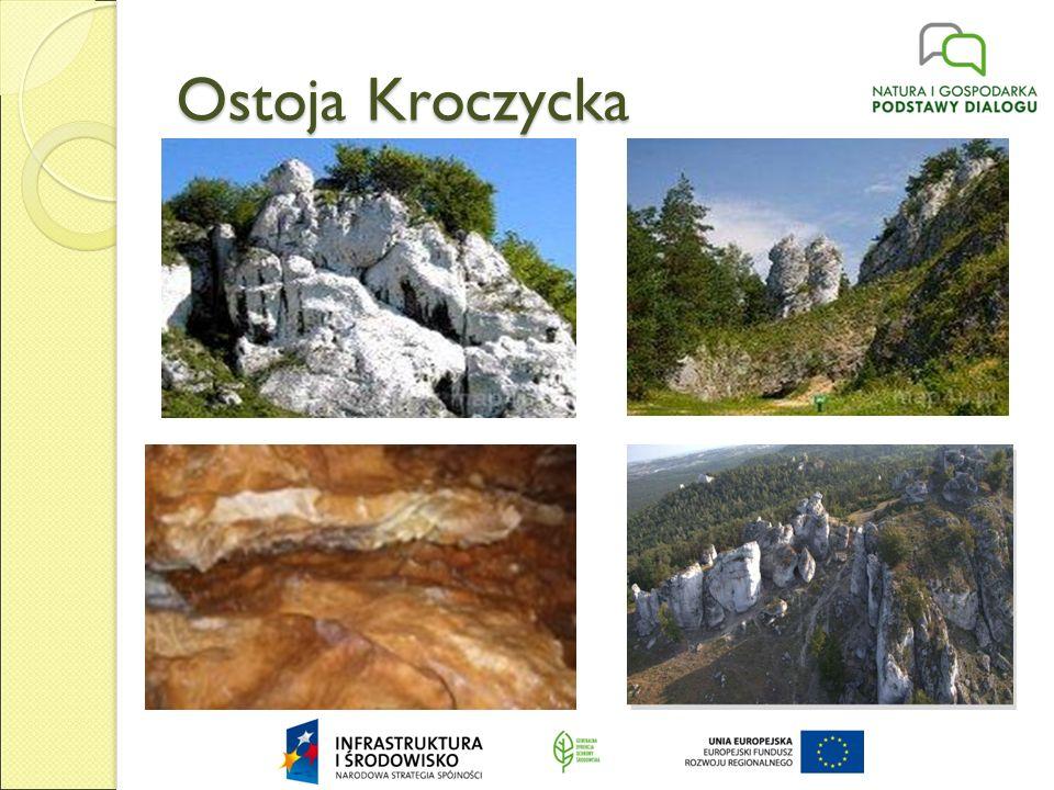 Ostoja Środkowojurajska Ostoja Środkowojurajska położona jest w rejonach: śląskim (67%) i małopolskim (33%) w centralnej części Jury Krakowsko- Częstochowskiej.