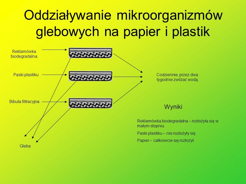 Oddziaływanie mikroorganizmów glebowych na papier i plastik Gleba Paski plastiku Bibuła filtracyjna Reklamówka biodegradalna Codziennie, przez dwa tyg