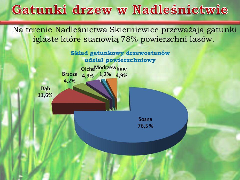 Na terenie Nadleśnictwa Skierniewice przeważają gatunki iglaste które stanowią 78% powierzchni lasów.