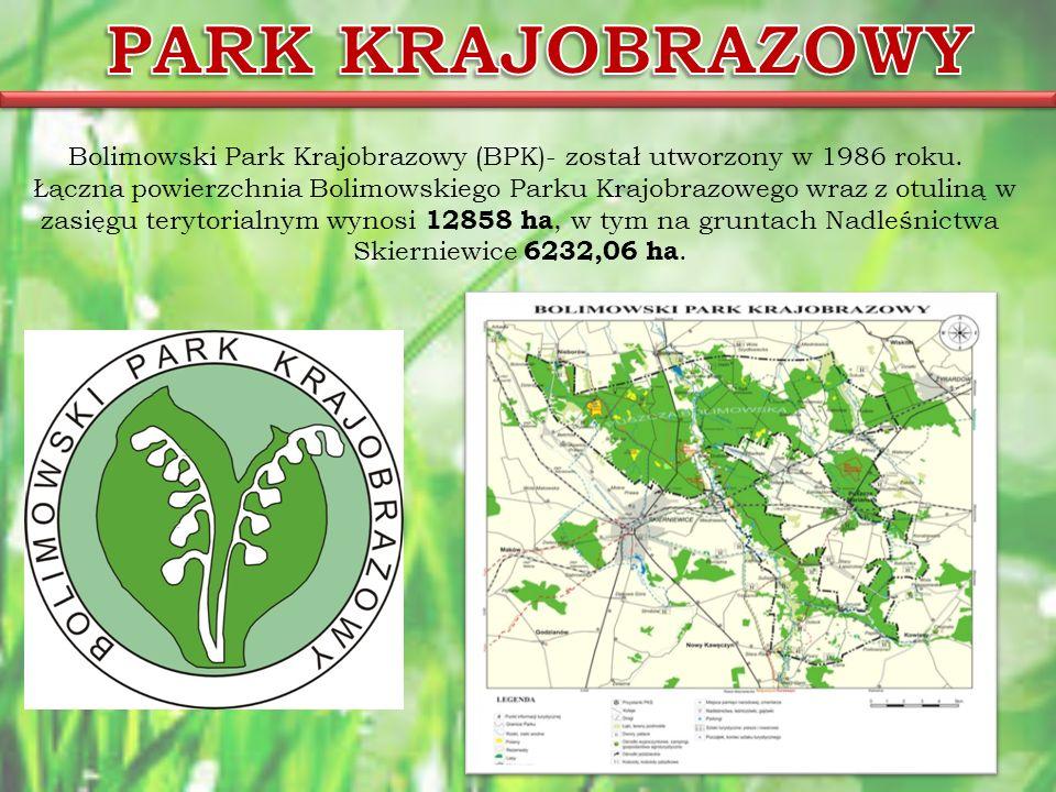 Bolimowski Park Krajobrazowy (BPK)- został utworzony w 1986 roku.