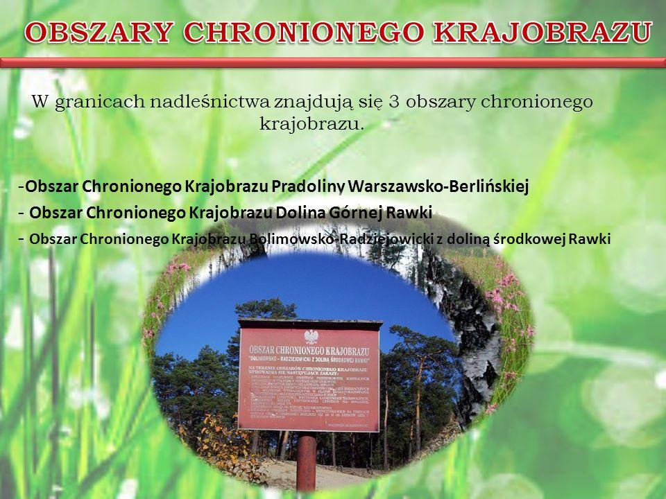 W granicach nadleśnictwa znajdują się 3 obszary chronionego krajobrazu.