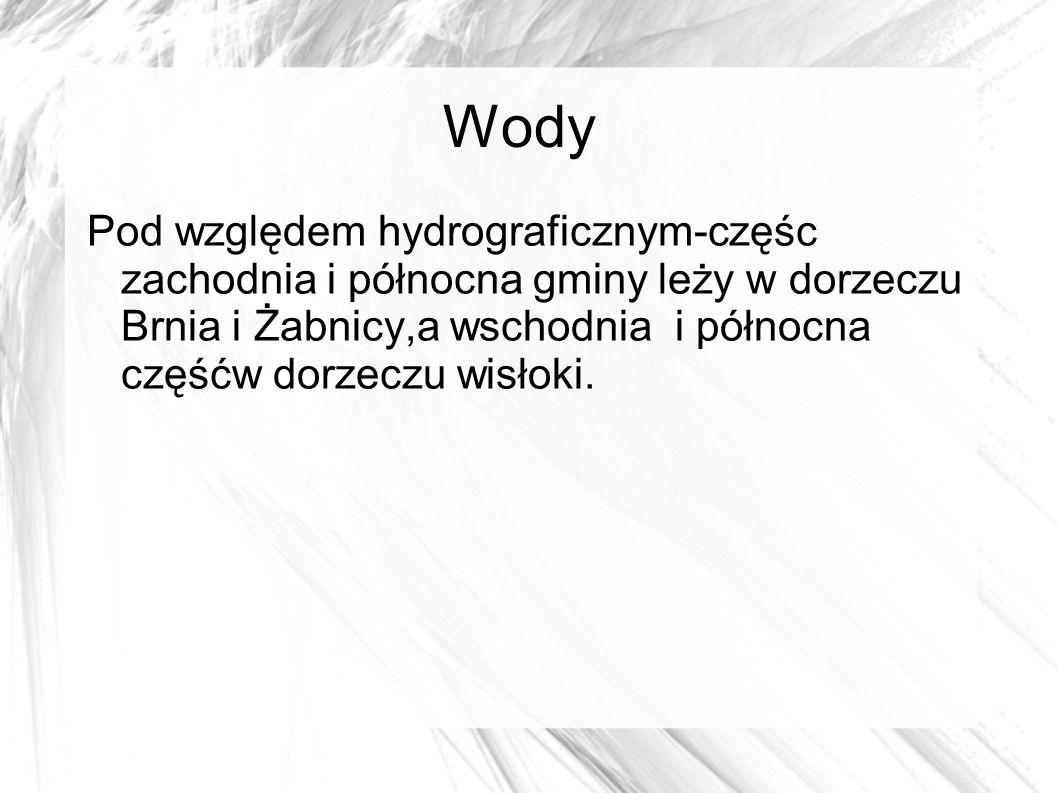 Wody Pod względem hydrograficznym-częśc zachodnia i północna gminy leży w dorzeczu Brnia i Żabnicy,a wschodnia i północna częśćw dorzeczu wisłoki.