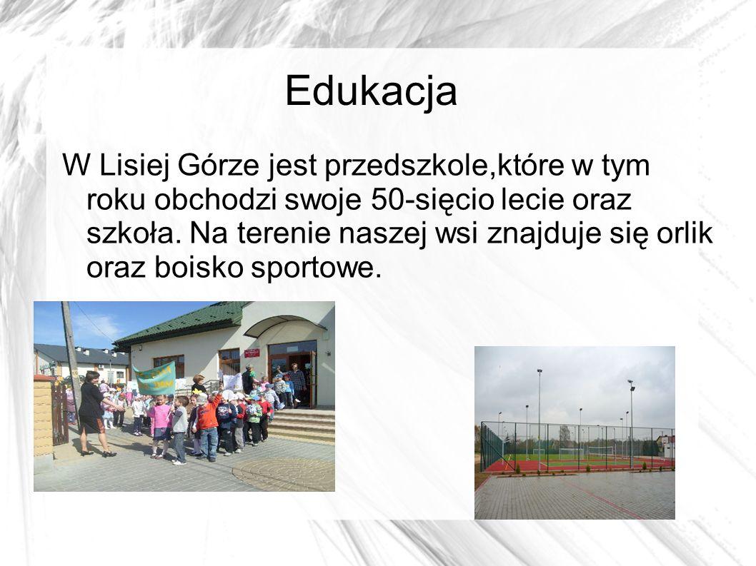 Edukacja W Lisiej Górze jest przedszkole,które w tym roku obchodzi swoje 50-sięcio lecie oraz szkoła.