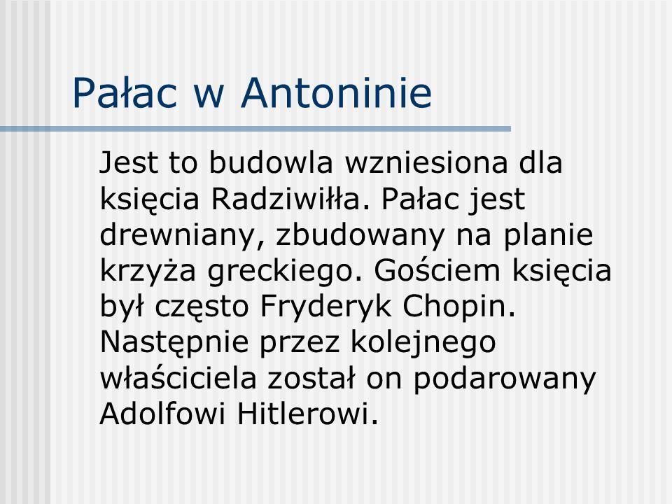 Pałac w Antoninie Jest to budowla wzniesiona dla księcia Radziwiłła. Pałac jest drewniany, zbudowany na planie krzyża greckiego. Gościem księcia był c