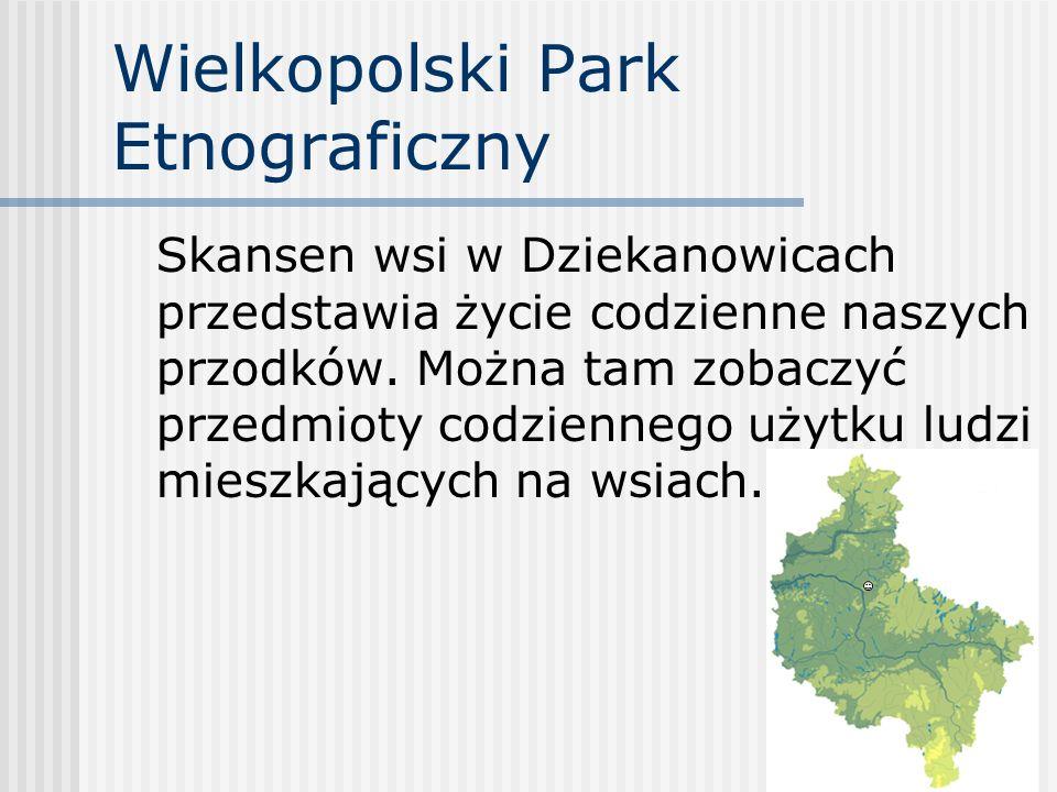 Wielkopolski Park Etnograficzny Skansen wsi w Dziekanowicach przedstawia życie codzienne naszych przodków. Można tam zobaczyć przedmioty codziennego u