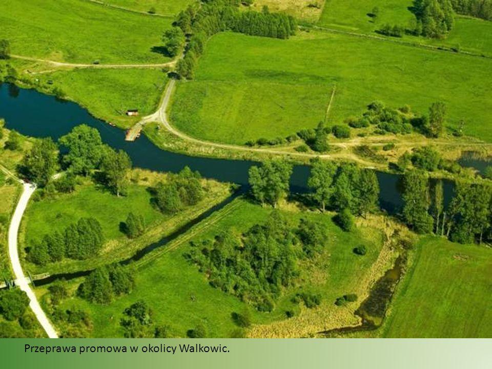 Noteć ma 391,3 km. długości. Powierzchnia dorzecza wynosi 17300 km².