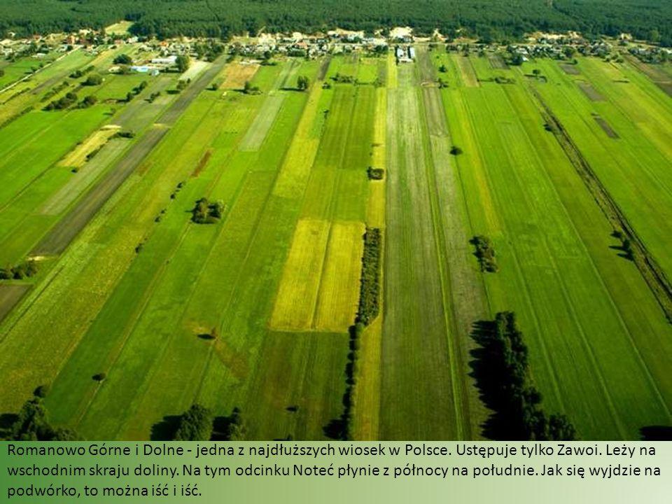 Za to rolnictwo w dolinie rozwija się coraz lepiej.