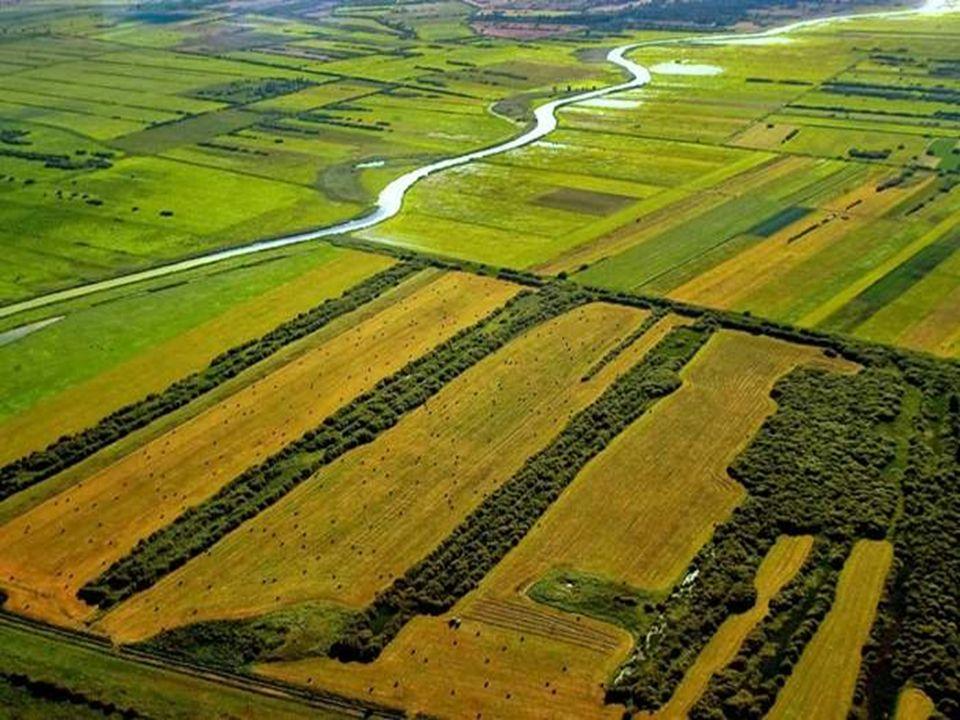 Wieleń - miejscowość nad rzeka, ale jak większość polskich miast od rzeki odwrócona.