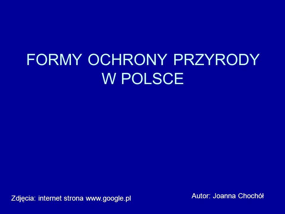 FORMY OCHRONY PRZYRODY W POLSCE Autor: Joanna Chochół Zdjęcia: internet strona www.google.pl