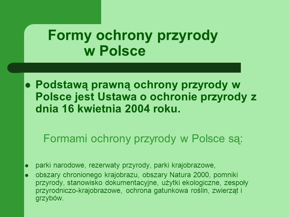 Formy ochrony przyrody w Polsce Podstawą prawną ochrony przyrody w Polsce jest Ustawa o ochronie przyrody z dnia 16 kwietnia 2004 roku.