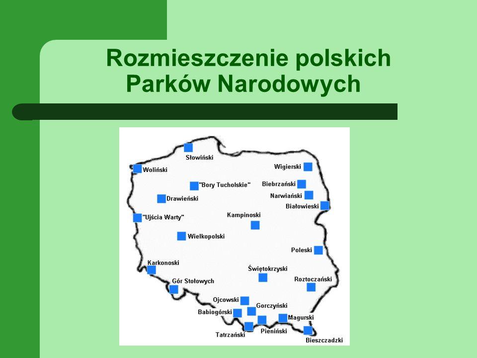 Rozmieszczenie polskich Parków Narodowych