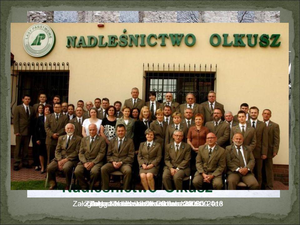 Prezentację przygotowali: Szymon Rosa Kamil Sławkowski Dominik Wąs IV Liceum Ogólnokształcące im.