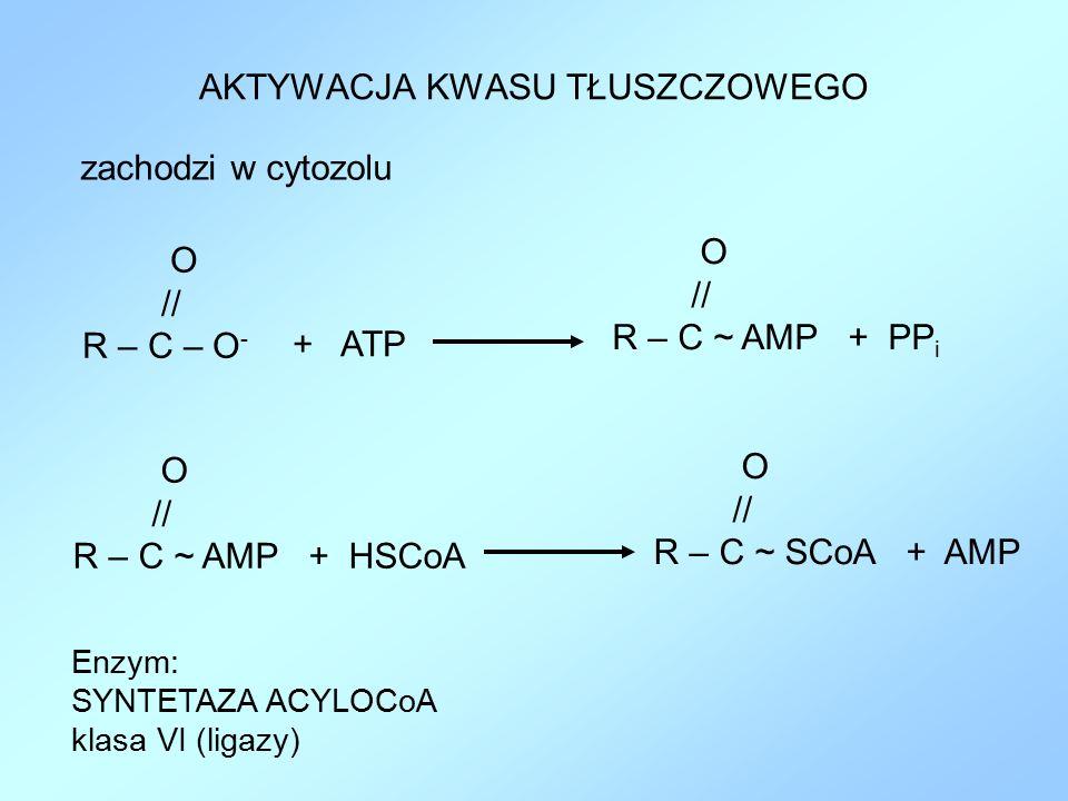 AKTYWACJA KWASU TŁUSZCZOWEGO zachodzi w cytozolu O // R – C – O - + ATP O // R – C ~ AMP + PP i O // R – C ~ AMP + HSCoA O // R – C ~ SCoA + AMP Enzym