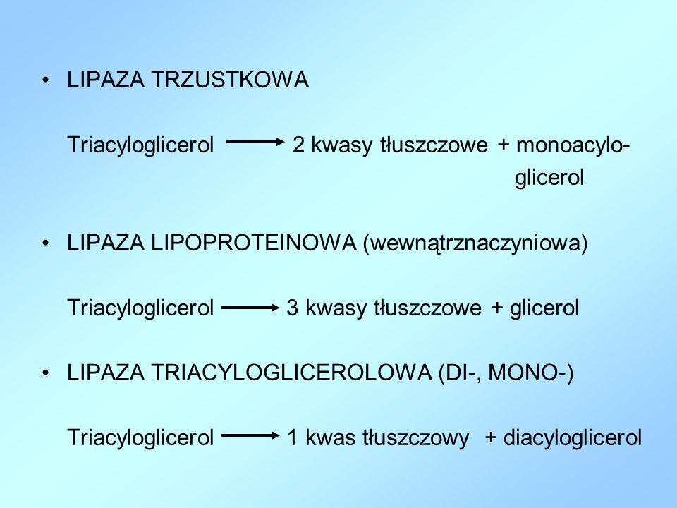 LIPAZA TRZUSTKOWA Triacyloglicerol 2 kwasy tłuszczowe + monoacylo- glicerol LIPAZA LIPOPROTEINOWA (wewnątrznaczyniowa) Triacyloglicerol 3 kwasy tłuszc