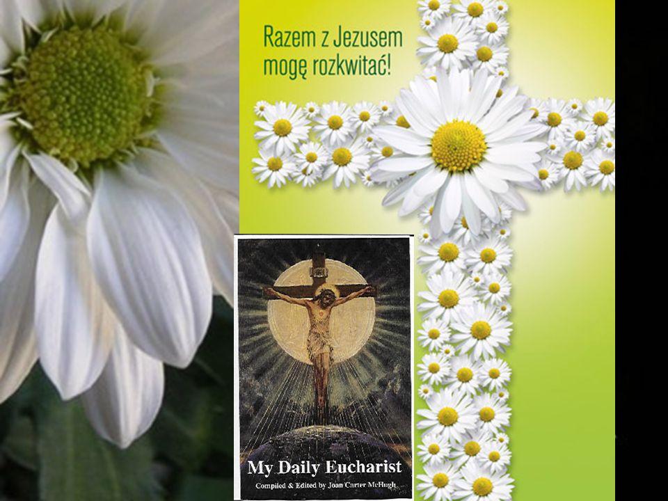 Cuda eucharystyczne przyjmowały różnorakie formy.