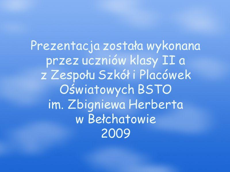 Prezentacja została wykonana przez uczniów klasy II a z Zespołu Szkół i Placówek Oświatowych BSTO im.