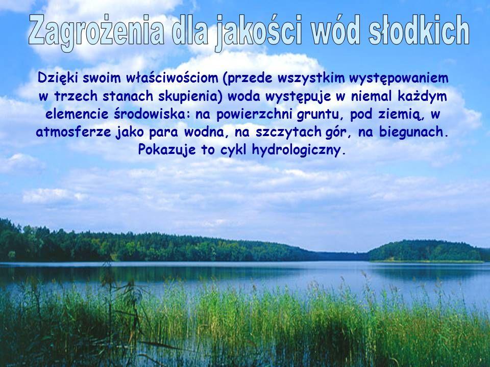 Dzięki swoim właściwościom (przede wszystkim występowaniem w trzech stanach skupienia) woda występuje w niemal każdym elemencie środowiska: na powierzchni gruntu, pod ziemią, w atmosferze jako para wodna, na szczytach gór, na biegunach.