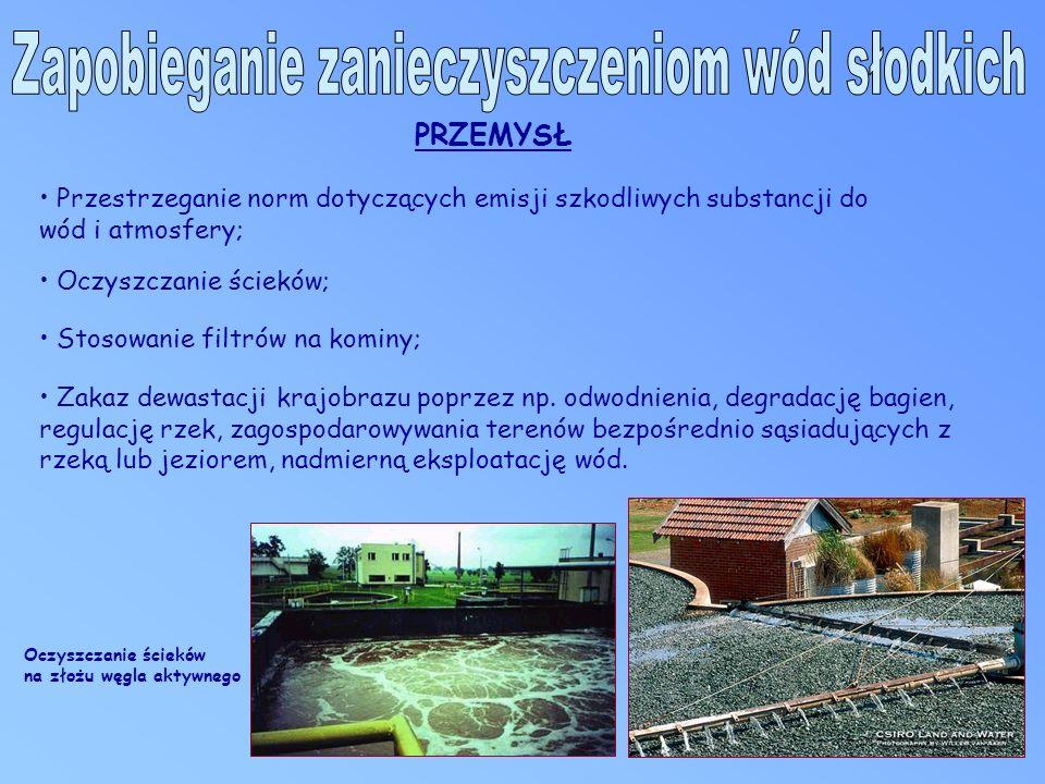 Przestrzeganie norm dotyczących emisji szkodliwych substancji do wód i atmosfery; Oczyszczanie ścieków; Stosowanie filtrów na kominy; Zakaz dewastacji krajobrazu poprzez np.