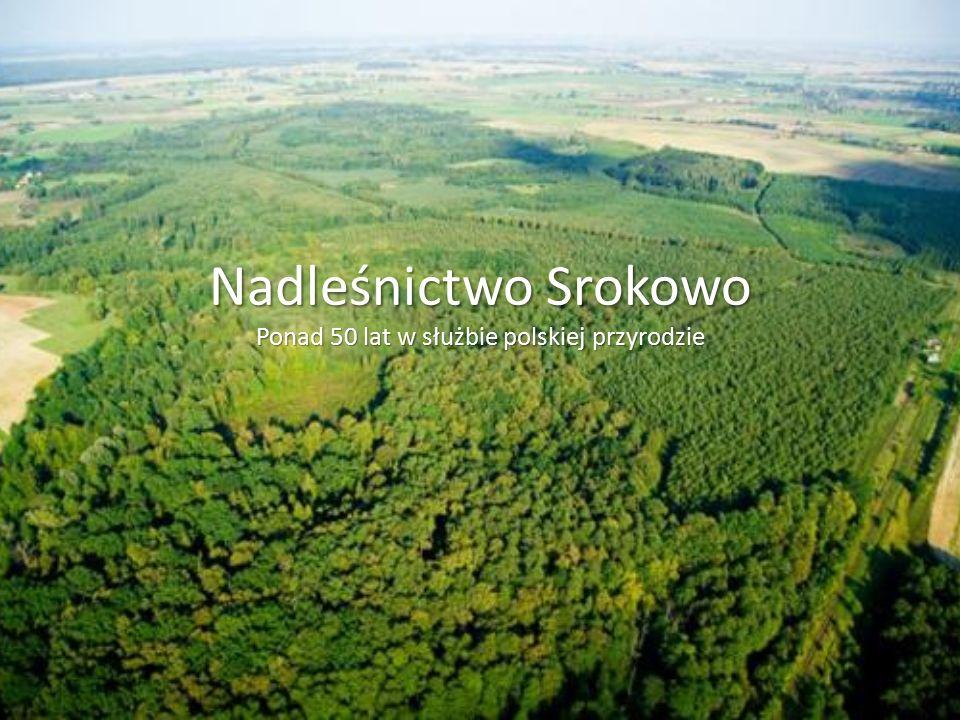 Nadleśnictwo Srokowo Ponad 50 lat w służbie polskiej przyrodzie