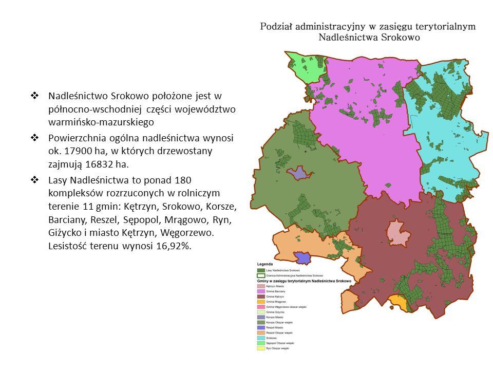  Nadleśnictwo Srokowo położone jest w północno-wschodniej części województwo warmińsko-mazurskiego  Powierzchnia ogólna nadleśnictwa wynosi ok.