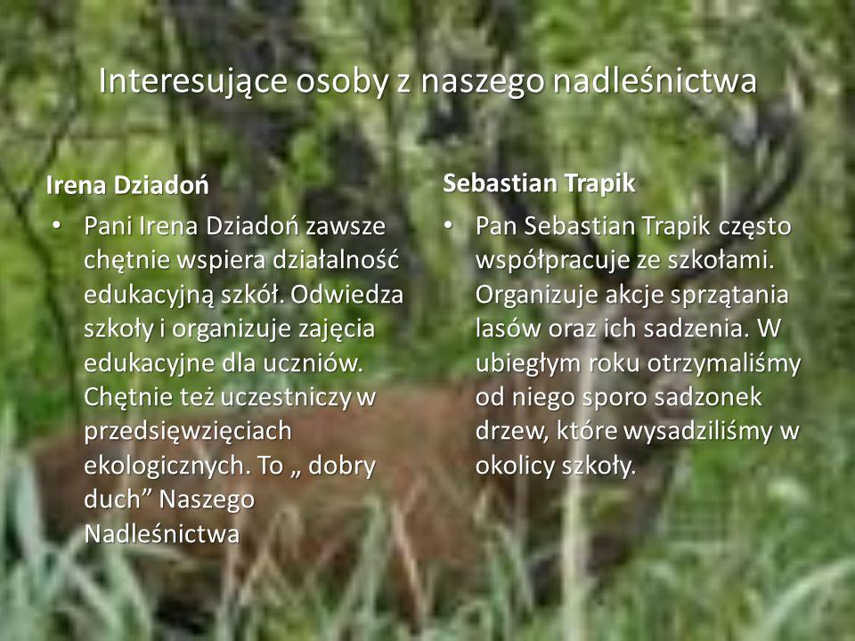 Interesujące osoby z naszego nadleśnictwa Irena Dziadoń Pani Irena Dziadoń zawsze chętnie wspiera działalność edukacyjną szkół.