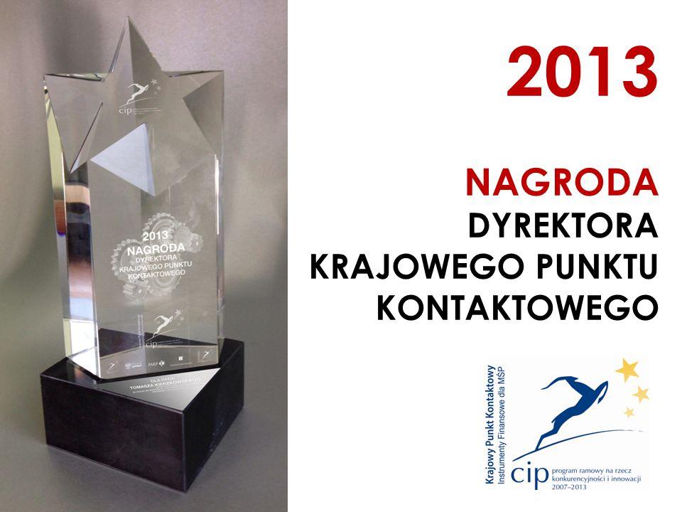 2013 NAGRODA DYREKTORA KRAJOWEGO PUNKTU KONTAKTOWEGO