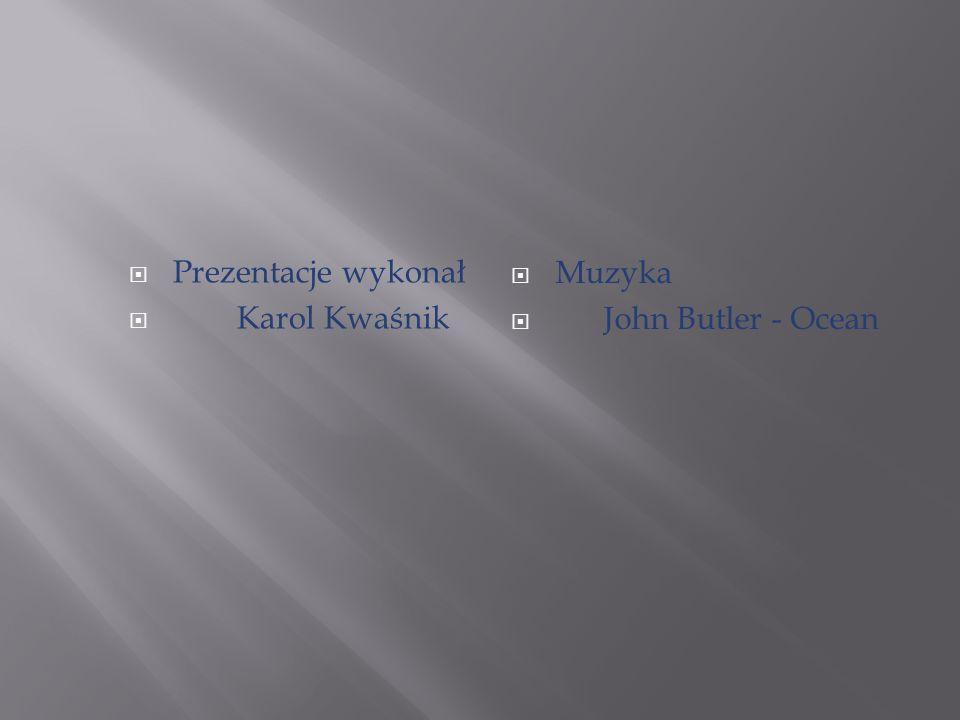  Muzyka  John Butler - Ocean  Prezentacje wykonał  Karol Kwaśnik