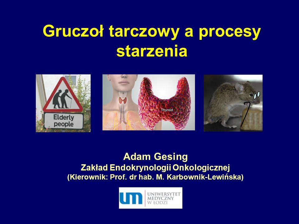 Gruczoł tarczowy a procesy starzenia Adam Gesing Zakład Endokrynologii Onkologicznej (Kierownik: Prof. dr hab. M. Karbownik-Lewińska)