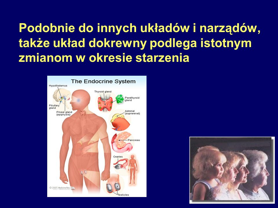 """Cechy charakterystyczne:  Zmniejszona masa i rozmiary ciała  Brak receptorów hormonu wzrostu  Brak białek wiążących hormon wzrostu  Oporność na GH z wysokim stężeniem tego hormonu w surowicy krwi  Osłabiona czynność gruczołu tarczowego Myszy GHRKO Zjawisko wyłączenia (""""knockout ) genu dla receptora GH i białka wiążącego GH (GHRKO; """"karły Larona ) (Zhou i wsp., Proc Natl Acad Sci USA 1997; 94: 13215-13220)"""